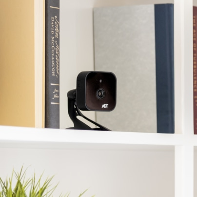 Johnson City indoor security camera